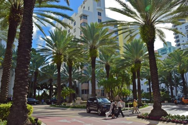 Miami05.jpg