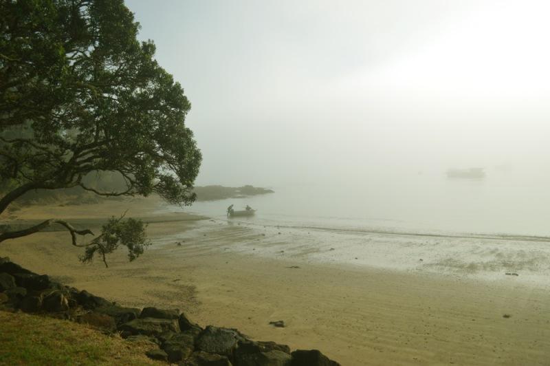 NZ22.jpg