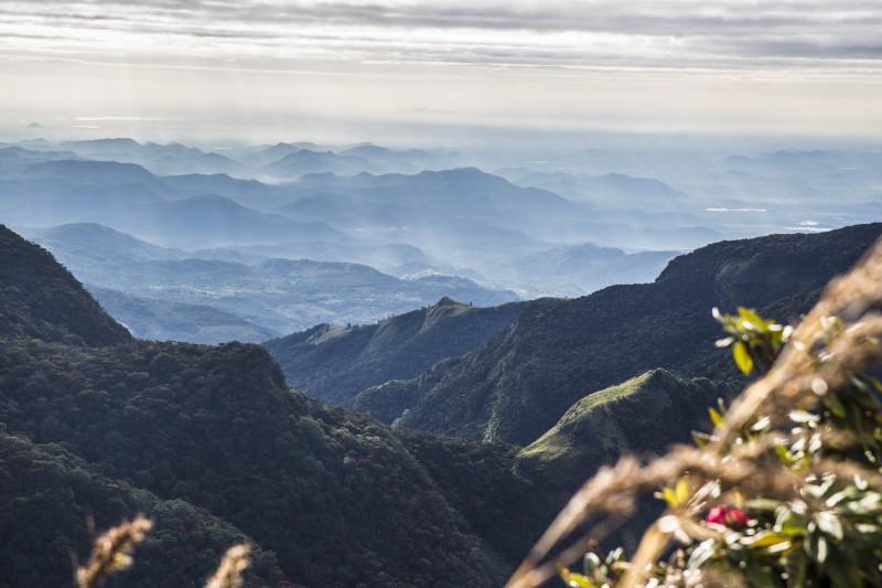 Sri Lanka - Horton view nice